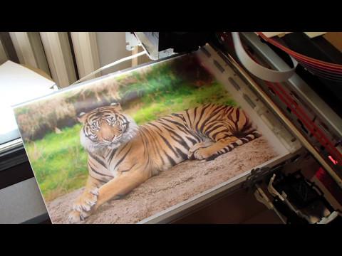 Сувенирный принтер на базе Epson Stylus Photo R220 для Сани с Сахалина .