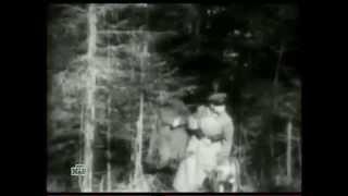 """Кто """"прошляпил"""" начало Великой Отечественной войны?"""