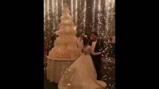 Жених и невеста разрезают свадебный торт / Армянская свадьба 2017