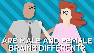 Are Male And Female BRAINS Different? | Earth Lab