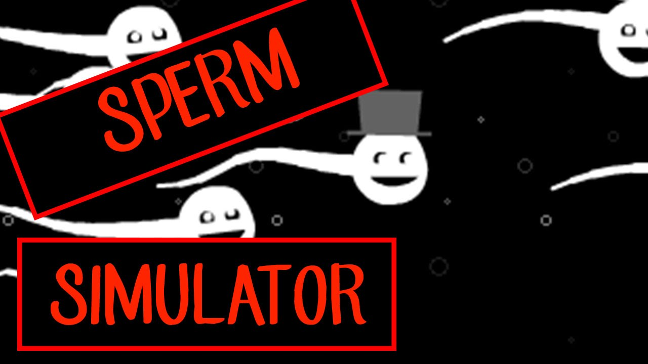 vagina simulator