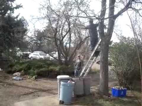 Video-2011-04-10-16-49-54