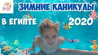 Зимние каникулы в Египте купание с морскими рыбками Обзор отеля Royal Grand Sharm 5 ч 1