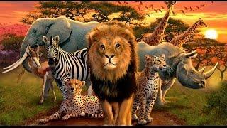 Дикие животные на английском языке для детей.Wild animals in English for children.
