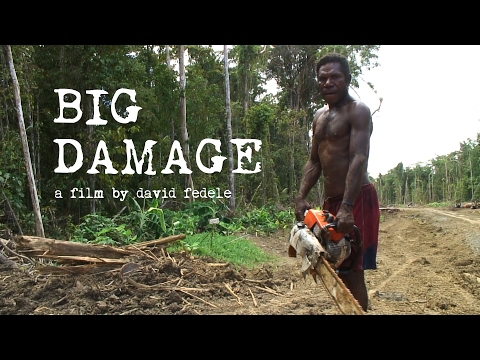 BIG DAMAGE - Illegal Logging in Papua New Guinea (FULL FILM)