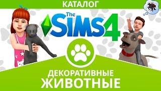 The Sims 4 - Декоративные животные каталог - Скачать бесплатно!