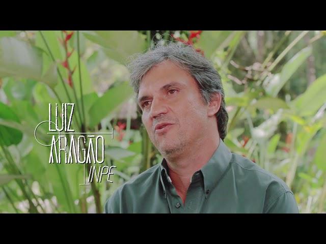 Amazônia Carbônica