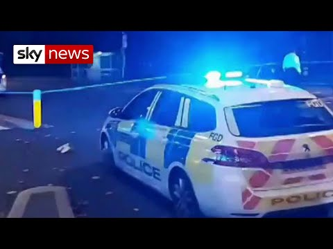 Car crashes into London police station