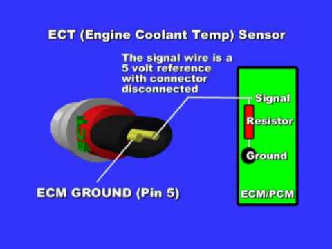 Engine Coolant Temperature Sensor Youtube. Engine Coolant Temperature Sensor. Wiring. One Wire Wiring Temp Probe At Scoala.co