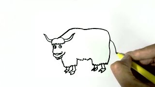 How to draw a Yak- in easy steps for children. beginners