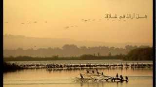 Mawtini - Omar Kamal موطني - عمر كمال