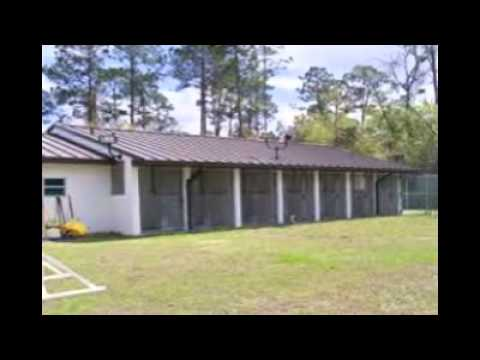 Dog Kennel Business For Sale - YouTube
