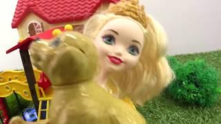 Мультик с куклами Барби: заботимся о собаке