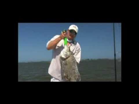 Giant triple tail youtube for Triple tail fish recipes
