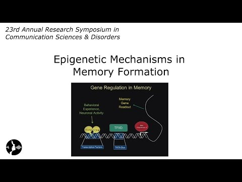 David Sweatt, PhD: Epigenetic Mechanisms in Memory Formation