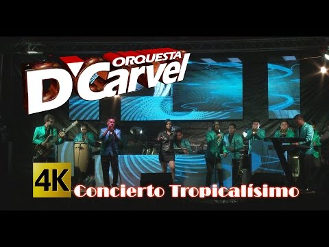 Orquesta D´Carvel - Concierto Tropicalísimo y Algo Más / Calidad 4K