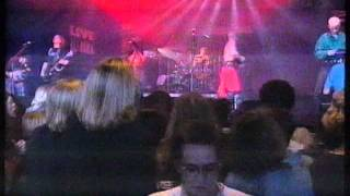 "The Inchtabokatables ""Hoywoi"" Live 1994"