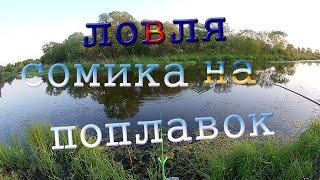 Ловля сомика и карася на поплавок рыбалка на диком озере Рыбалка в Приморском крае
