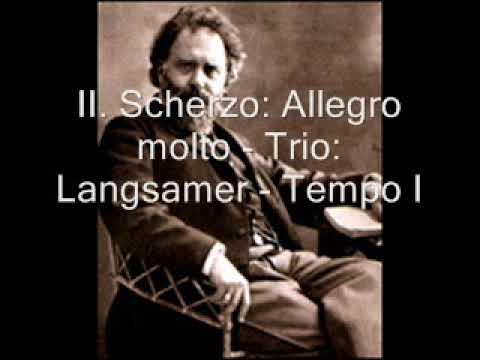 Wilhelm Kienzl: Piano Trio in F minor, Op. 13