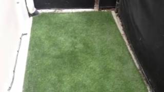 Potty training Fresh Step Turf Grass