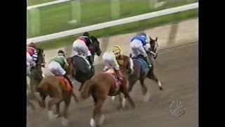 2004 Belmont Stakes - Birdstone + Post Race