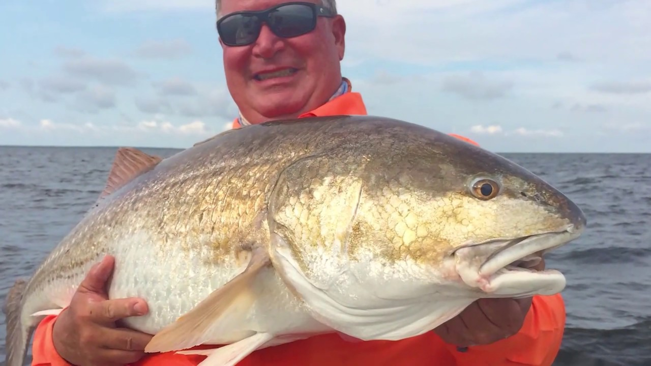Speckled Trout, Flounder, & Red Drum Fishing