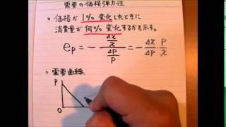 需要の価格弾力性 (ミクロ1消費者理論) 15