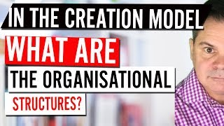 In the creation model, What are the organizational structures ?