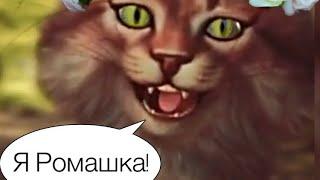 Кошка Ромашка