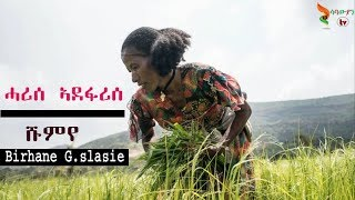 Shumye Gebreslase -  Harise ||  ሓሪሰ ኣደፋሪሰ - old Tigrigna Music 2020