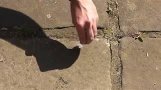 Finger durch Münze schlagen Münztrick Zaubertricks zum Nachmachen Geldtrick Tutorial