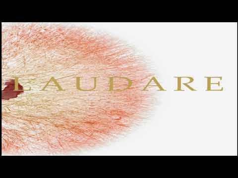 Laudare - Have Heart, Waste Flesh (Ep: 2020)