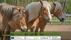 PÄMÄ-info: Hevosihmisten viranomaisilta