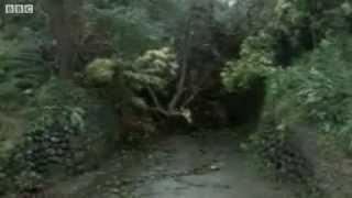 Bão số Haiyan sắp đổ bộ Philip- Chưa vào tới mà gió đã bay nhà