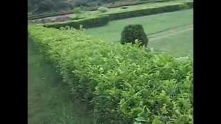 Bishnupur Lalgar natural park