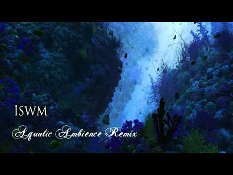 Donkey Kong Country - Aquatic Ambience Remix (by iSWM)