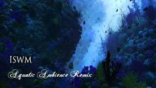 Gambar cover Donkey Kong Country - Aquatic Ambience Remix (by iSWM)