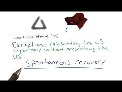 Extinction and spontaneous recovery - Intro to Psychology