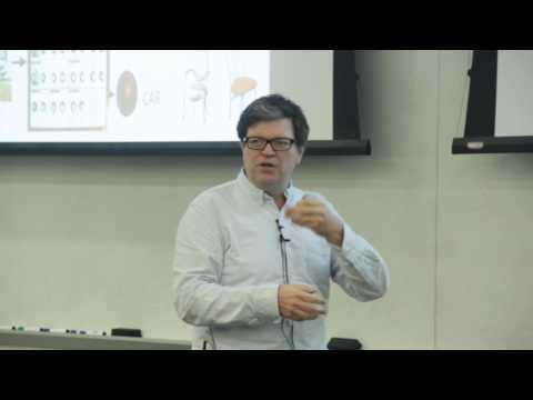 Yann LeCun: Where is AI Leading Us? (lecture part)