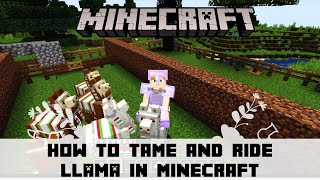 How to Tame Rİde and Decorate Llama in Minecraft   Lead a llama   How to put carpet on llama   Hindi