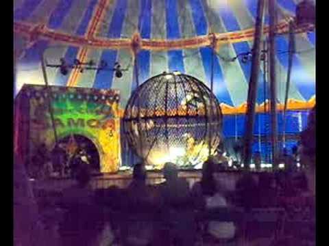 Accident au cirque des Samoa