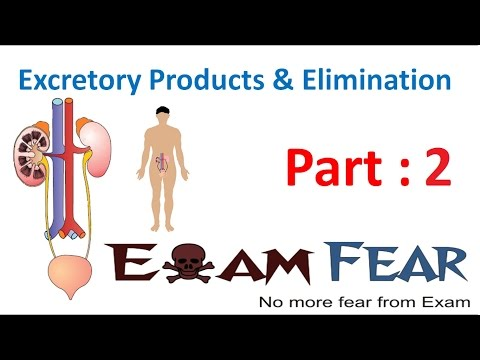 Biology Excretory Products & Elimination Part 2 (Nitrogenous Wastes) CBSE Class 11 XI