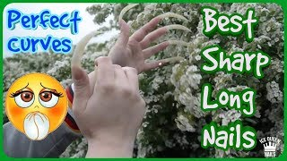WOOW!!! NEW GREATEST ASMR video ever! VERY LONG AND SHARP NAILS SCRATCH A FLOWERS