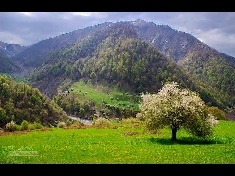 """ŞAHDAĞ"" national park. Azerbaijan, Qabala, Vandam."