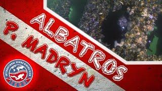 (4k) Buceo en Naufagio Albatros - Puerto Madryn, Argentina