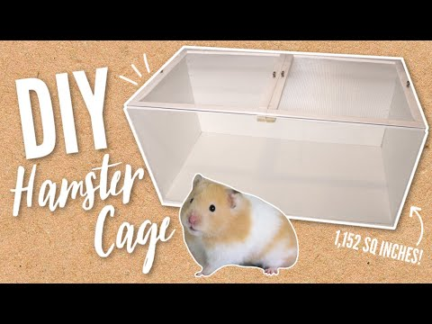 Building A NEW DIY Hamster Cage
