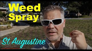Weed Killer For St Augustine Grass