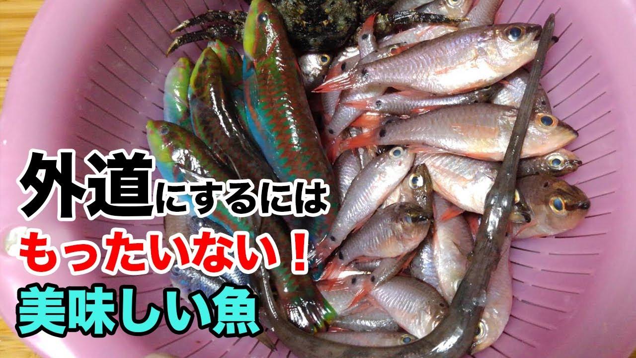 【外道でいいの?】おいしい未利用魚は食べないともったいないよ!