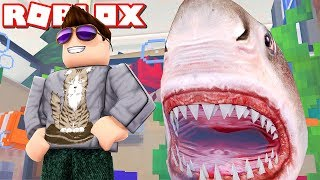 HEY SHARK! -Roblox Sea Life Tycoon Dansk Ep 1 with ComKean