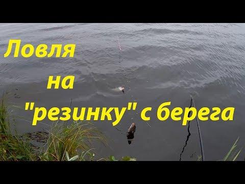 Ловля на резинку с берега, рыбалка на леща